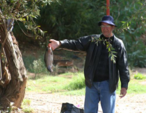 وزارة الزراعة لم تشتر منذ عامين أي أعلاف لتوزّعها على مربي الأسماك في الهرمل (رامح حمية)
