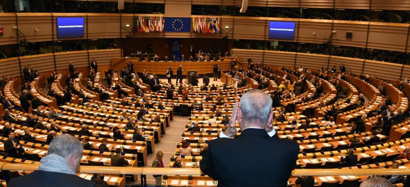 بري في البرلمان الاوروبي (حسن ابراهيم)