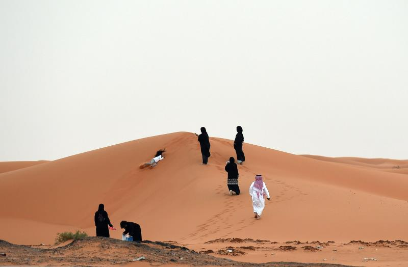 يشكل النفط مرتكزاً استثنائياً مكّن النظام السعودي من فرض إرادته داخلياً