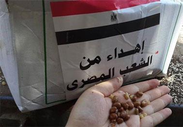 فصل آخر من الإهانة:  مساعدات مصرية فاسدة!