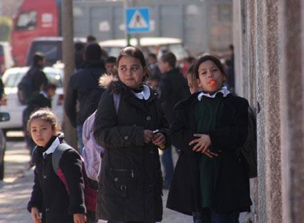 كترانين سُفرا فلسطين