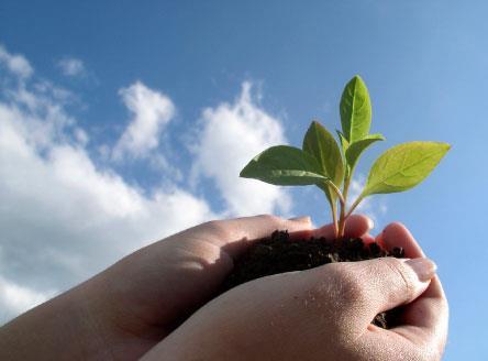 «المسؤولية الاجتماعية» للشركات... مزيد من التفعيل