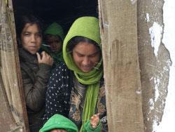 محمود بعد عدي: الموت من البرد