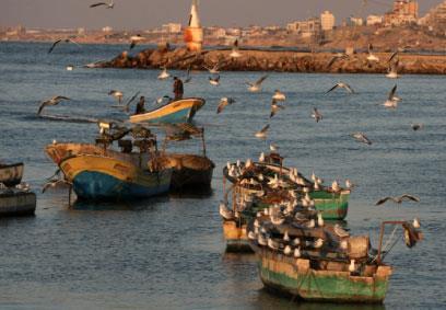 يوميّات على هامش  «احتفاليّة فلسطين للأدب» : إلى غزّة...  ذهبتُ  ورأيت