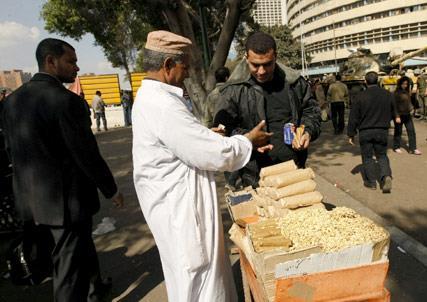 مصر جديدة: تماسيح الثورة المضادة