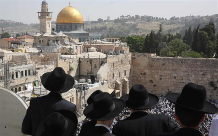 يمكن تحديد تسعة أنواع من التحقيقات الجنائية في الجرائم التي وقعت في فلسطين المحتلة