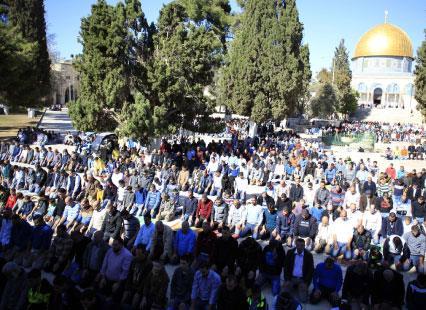 الجزائر وفلسطين... توأمة على طريق التحرير