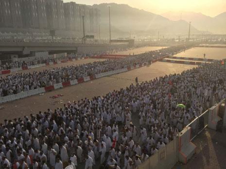 لجنة تحقيق آل سعود: انتحار الضحايا