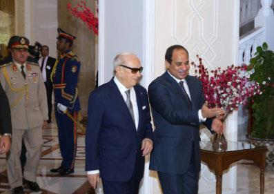 مصر | السيسي: الحكومة مستمرة مع تعديل الدستور