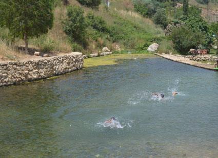 السباحة أكثر من حلم