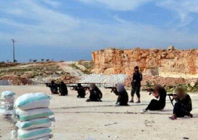 دلالات تعيين غزيين في «ولاية حلب»