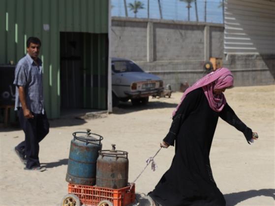 غزة: التحرّش والرشوة الجنسية يلاحقان الباحثات عن عمل