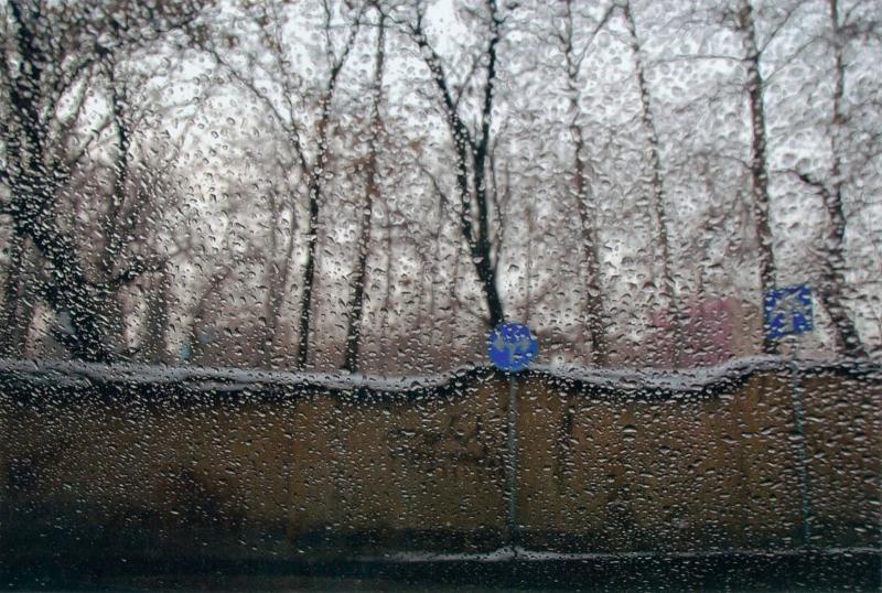 من سلسلة «ريح، شتاء وزجاج» للمخرج الإيراني عباس كيارستمي