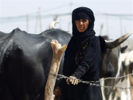 العراق | «قانون العفو العام»...  هل يُحسَم اليوم؟