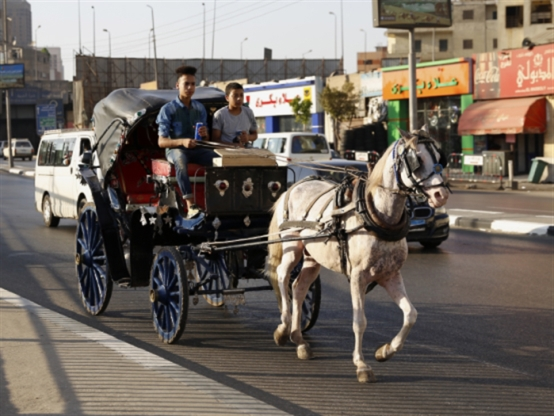 «النقد الدولي» للقاهرة: ألغوا دعم الأُسَر تحصلوا على القرض