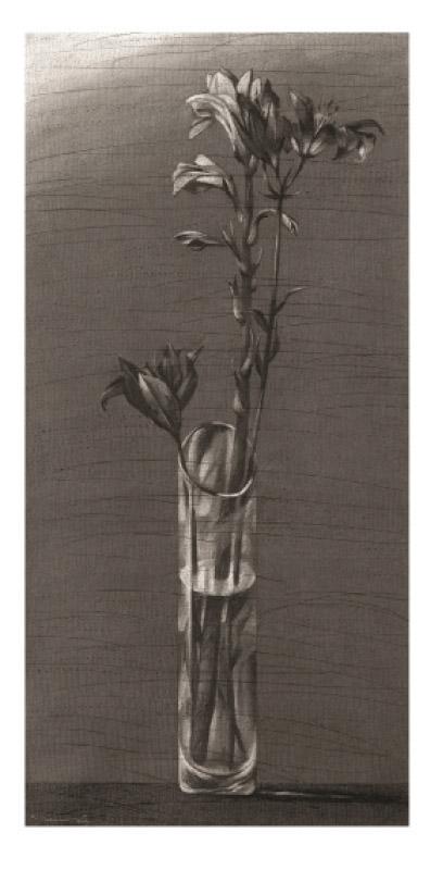 يوسف عبدلكي (فحم على ورق، 100× 50 سنتم، 2010)
