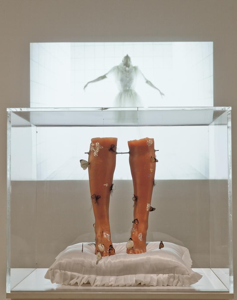 من تجهيز فيديو «الرحلة» للفنانة المصرية آمال قناوي (2004)