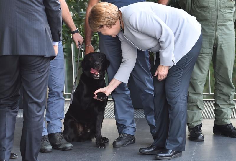 يلعب «البديل لألمانيا» على تحويل المهاجرين إلى كبش محرقة (أ ف ب)