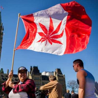 كندا تشرّع الماريجوانا