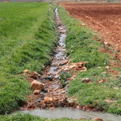مياه الجنوب غير صالحة للريّ والاستعمال!