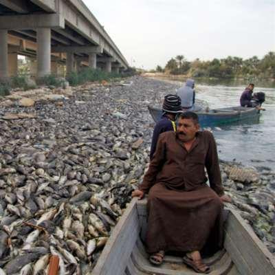 طريق عبد المهدي أكثر صعوبة: الأزمات البيئية تتوالد
