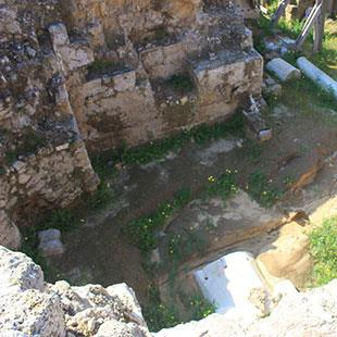 فلسطين | «تل السكن» ضحية «لجان التجريف»: المواقع الأثرية مقابل الرواتب!