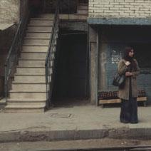 «أخضر يابس» لمحمد حماد: في جلد القاهرة!
