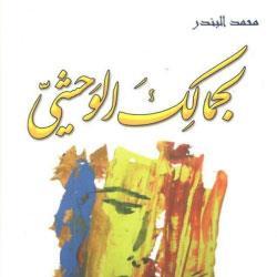 محمد البندر: تنويعات على «الثلاثية الصوفية»