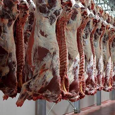 34 ألف وفية بالسرطان: فتشوا عن اللحوم