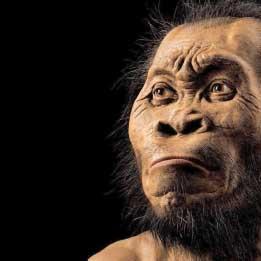 العلوم 2017: مسار تصاعدي | الإنسان «أعتق» مما كان يُعتقد