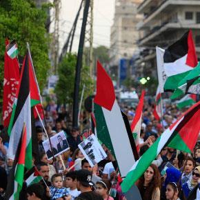 12 يوماً إضراباً: فلسطين   تهبّ لأسراها