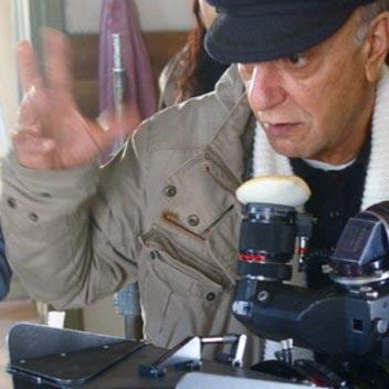 تونس: نصف قرن من الذاكرة السينمائية