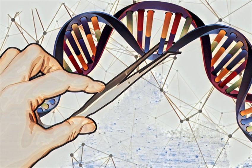 هل تزيد «الهندسة الوراثية» من خطر الإصابة بالسرطان؟
