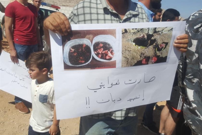 اعتصام ضد «معامل السموم» في محمية الحجير