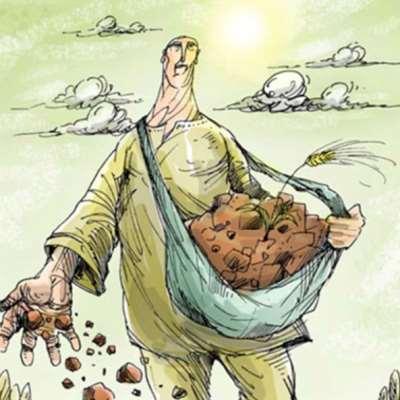 سوق الأرز والسياسة: من يصنع من؟