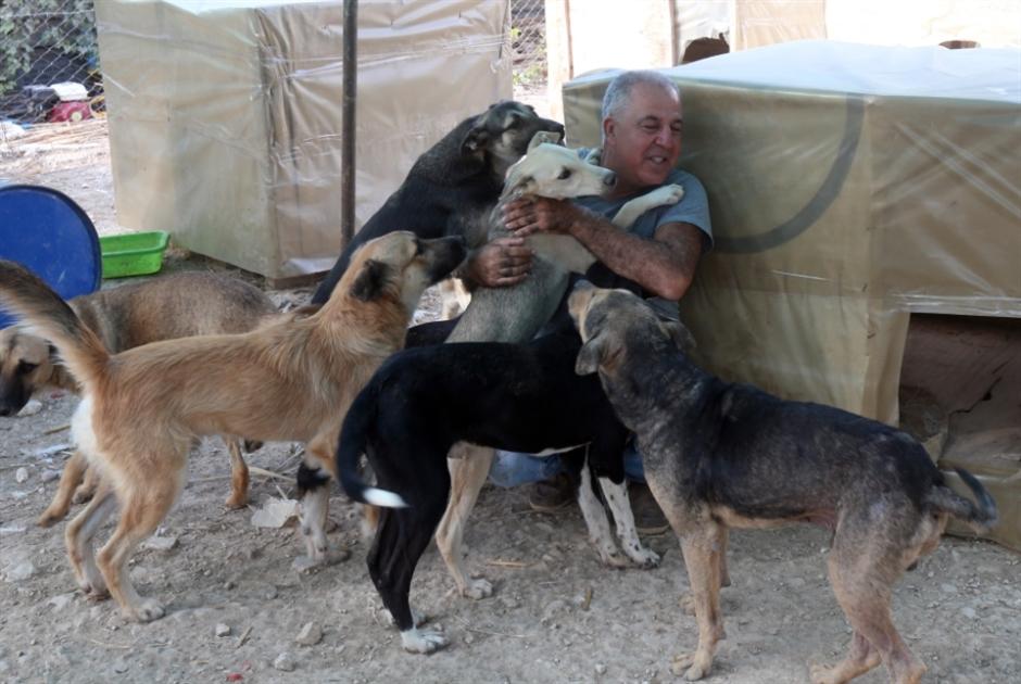 هيّا إلى Dany's: دعماً لحسين وكلابه