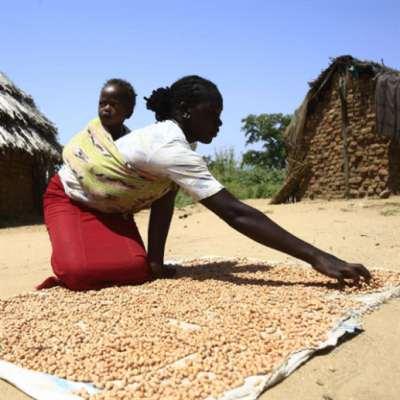 تعثّر سريع لمباحثات «سلام السودان»: كبرى الحركات المسلّحة تعلن انسحابها