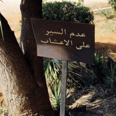 إصرار على تشريع مخالفة القوانين في حرج بيروت: «لغز» المستشفى المصري  لا يزال بلا حل