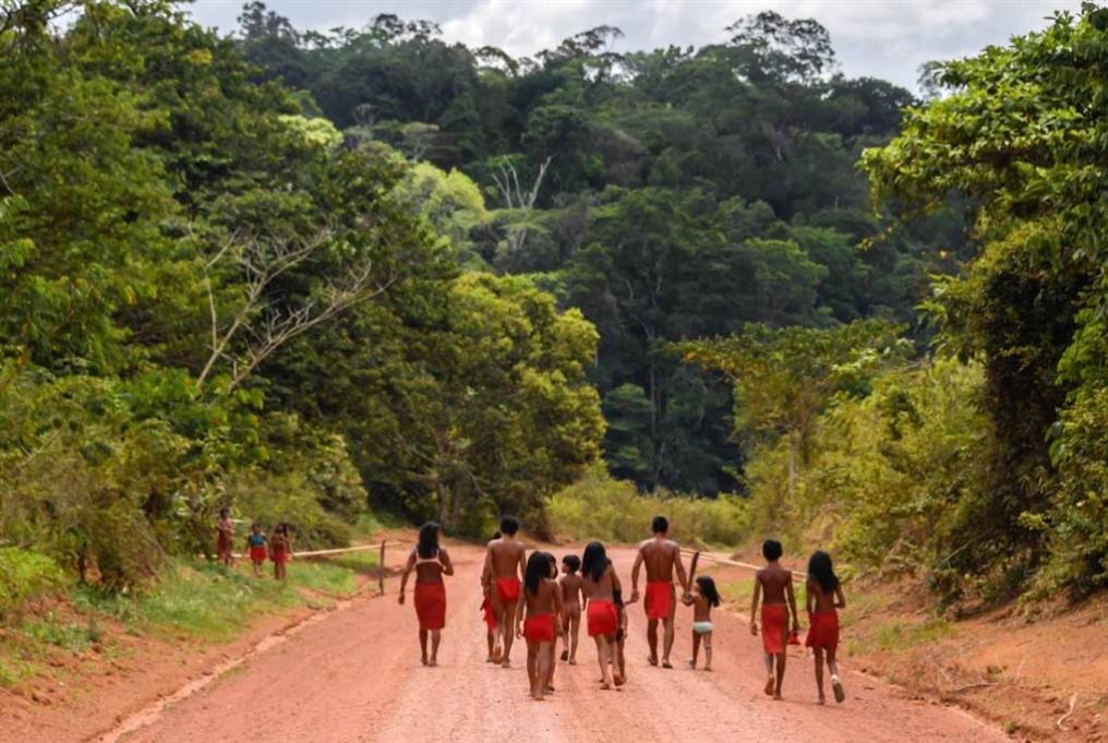 إجراءات بولسنارو: كارثة للسكان الأصليين والمناخ العالمي