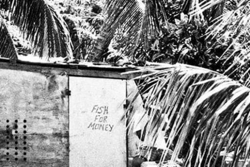 صور رافاييل بيرثو: سنة في الكاريبي