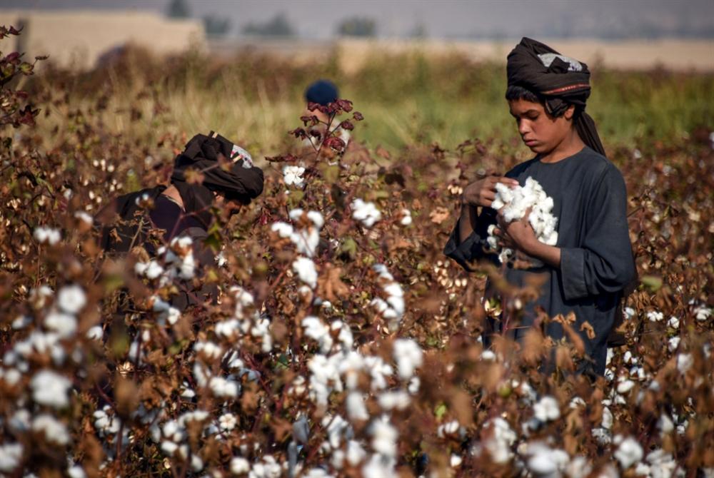 كابول ترحّب بدفء خطوط التفاوض بين واشنطن و«طالبان»