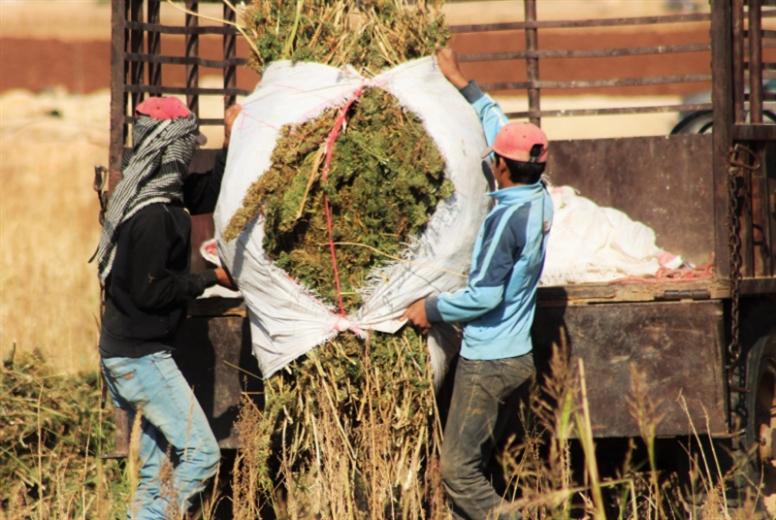 المزارعون: نعم للتشريع... لا لـ«الكوتا»!