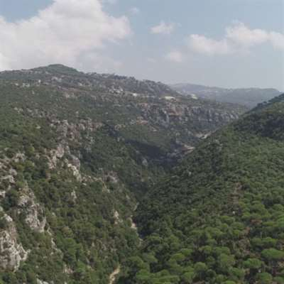 بعد المنطقة الصناعية: المتين بلا غابة ولا ينابيع!