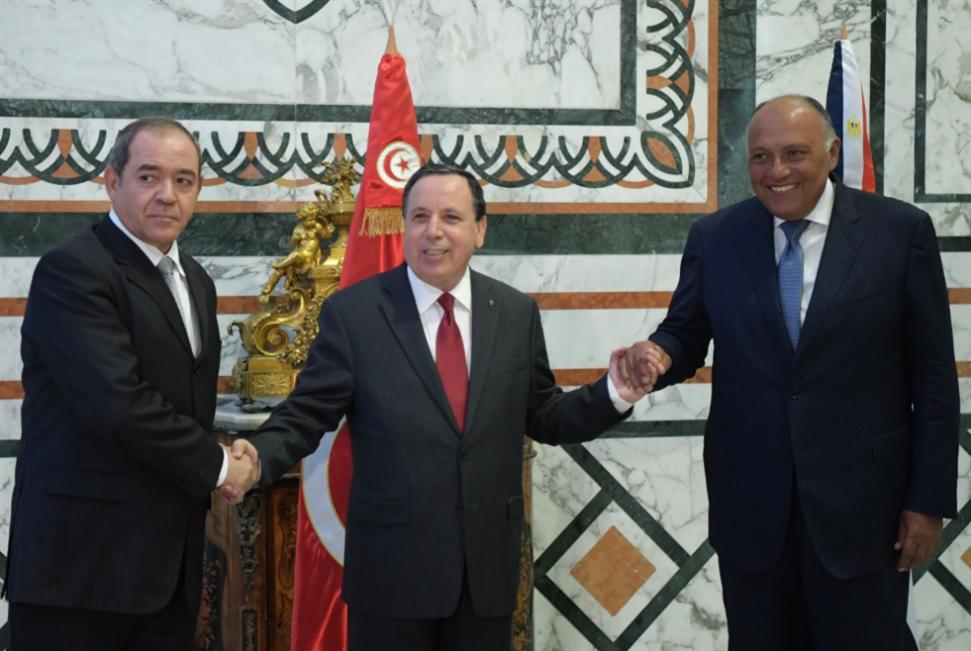 اجتماع جوار ليبيا: قمّة التناقضات