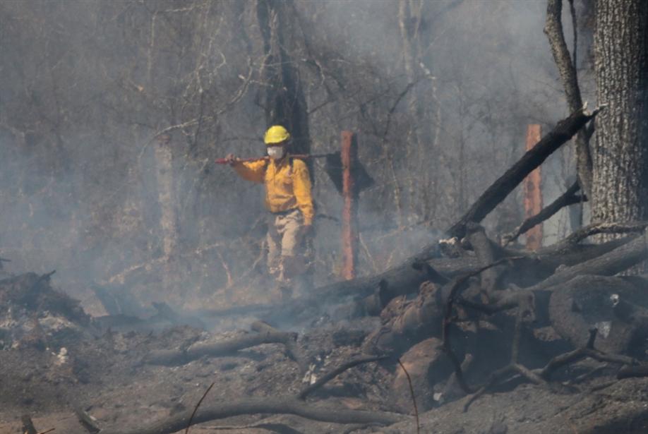 بولسُنارو يواجه محنة رئاسته: تدويل كارثة الأمازون