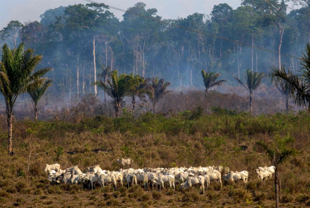حرائق الأمازون تسعّر خلافات ماكرون وبولسُنارو