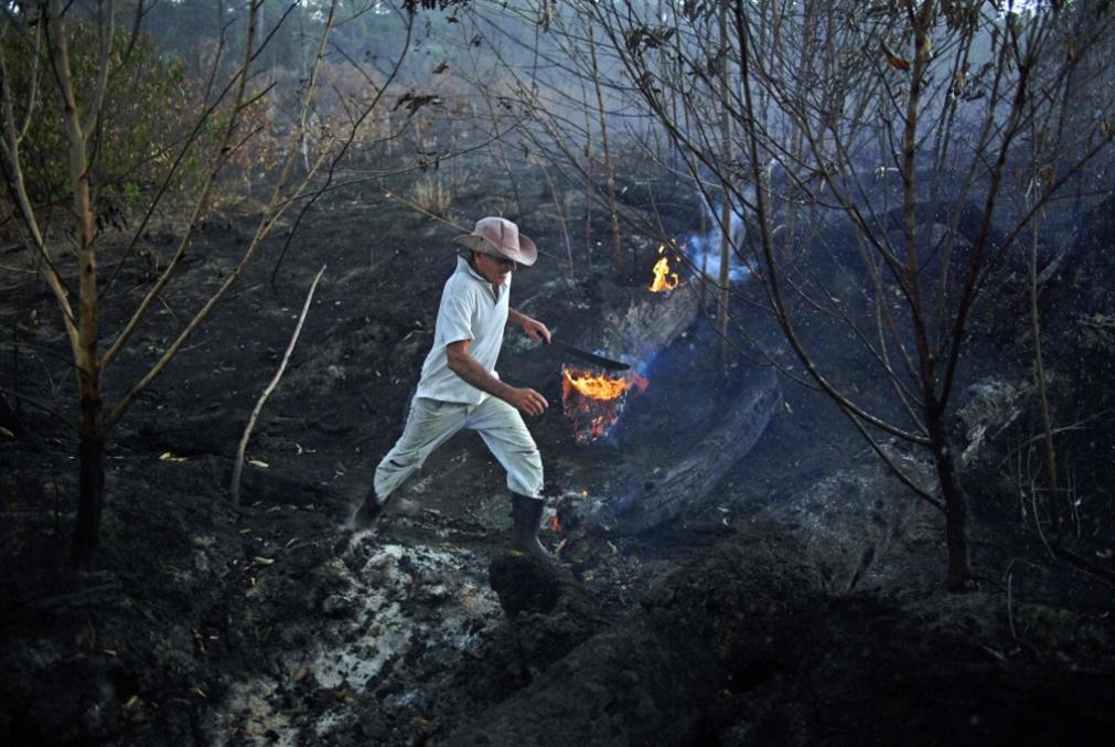 ترامب يظلّل بولسنارو: حرائق الأمازون «تحت السيطرة»!