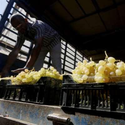 تجار سوق الخضار في سن الفيل ضحية احتيال؟