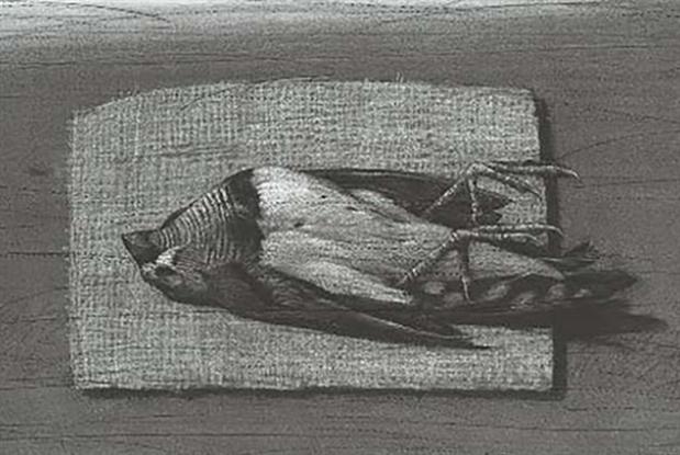 «تانيت» في عالم الحيوان... هرباً من بشاعة الواقع