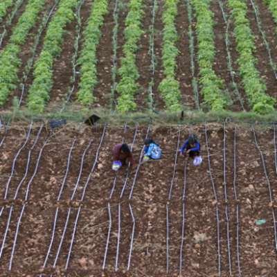 التربة مهدّدة بالتلوث والاجهاد والتحمّض